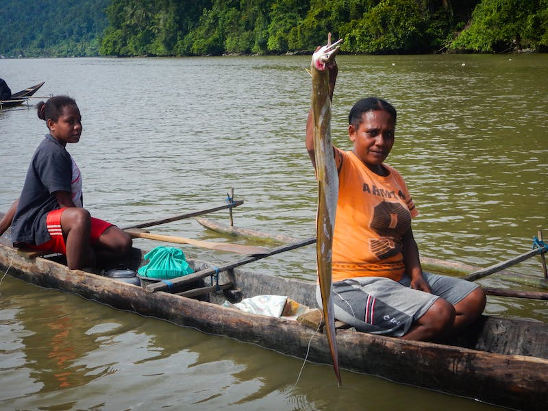 Arguni fishers harvest swamp eel as bait for their crab traps
