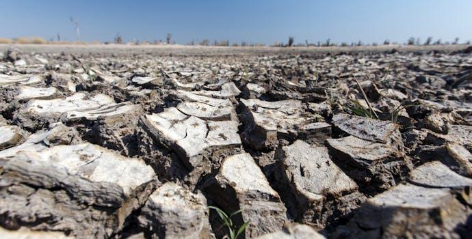 Baked Earth at the Okavango Delta, Moremi National Park in Botswana