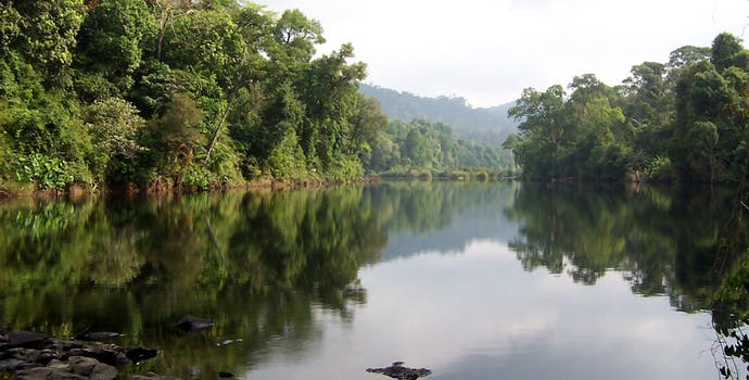 Areng River, Cardamom Mountains