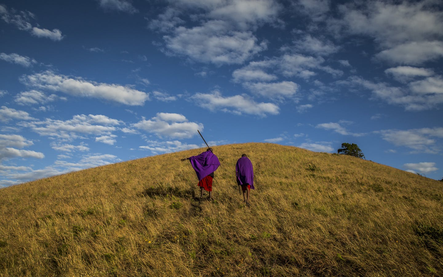 Maasai guides who work with the Maasai Wilderness Conservation Trust, make their way up to the Chyulu Hills cloud forest