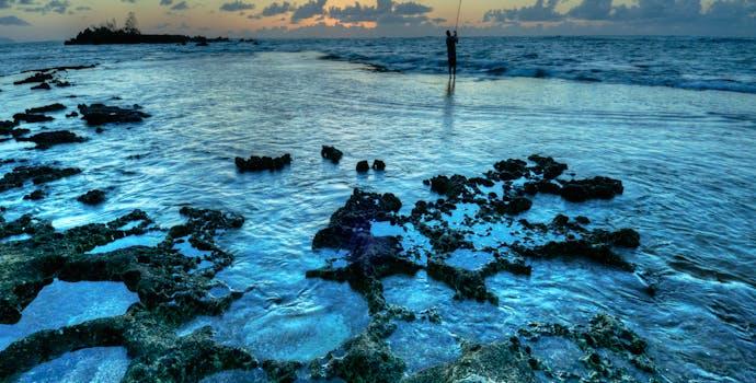 Hawaii fisherman.