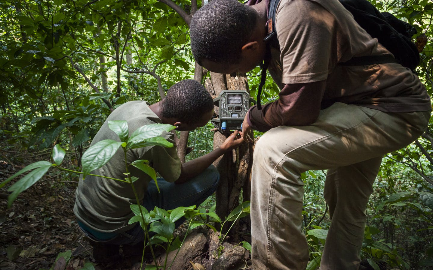 Men set camera trap, Tanzania.