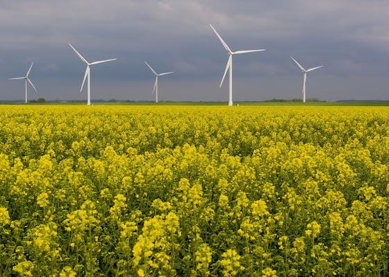 Wind power station near Westerhever, Germany.