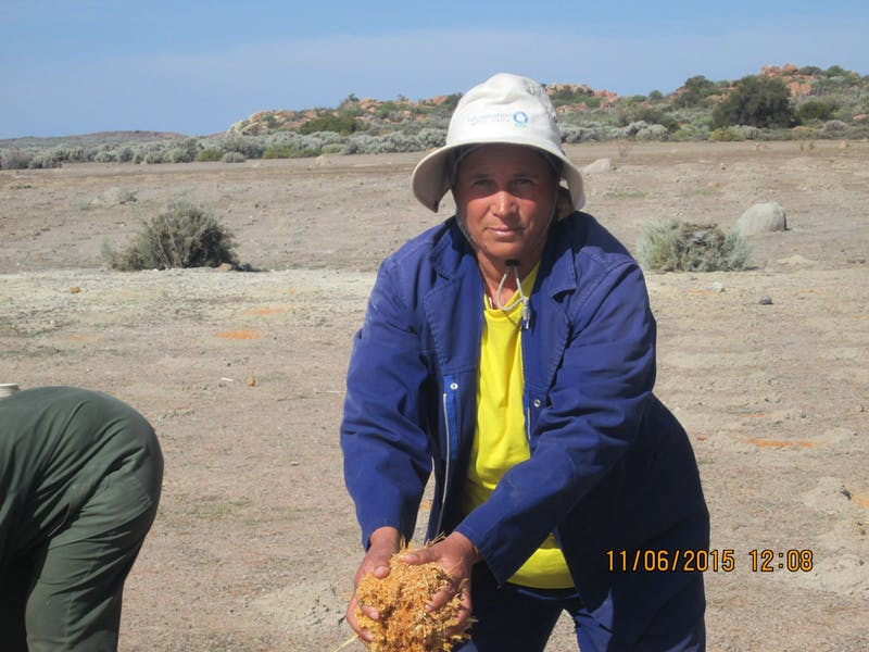 Restoration team leader Katrina Schwartz at work building micro catchments to reduce erosion in degraded farmland