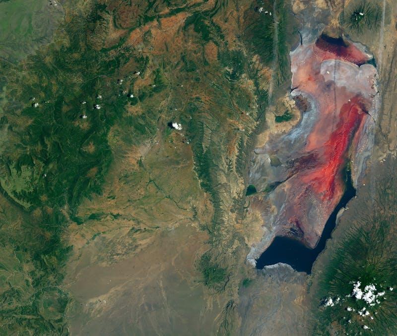 A satellite image of Lake Natron in northern Tanzania