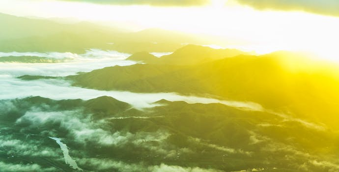 Aerial photograph above Suva, Fiji.