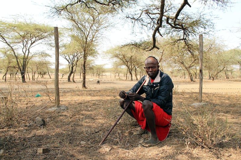 Herder and head of the morans (Maasai warriors) Masheer Torei