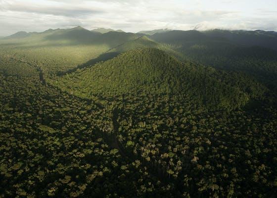 Kanuku Mountains, Guyana