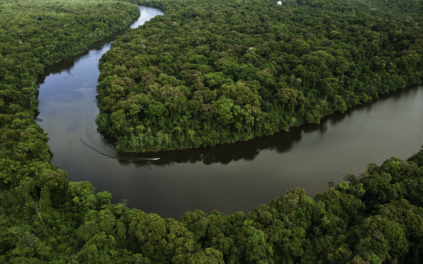 Aerial, Essequibo River