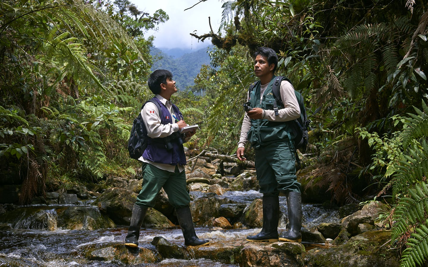 Park rangers patrolling the Alto Mayo Protected Forest