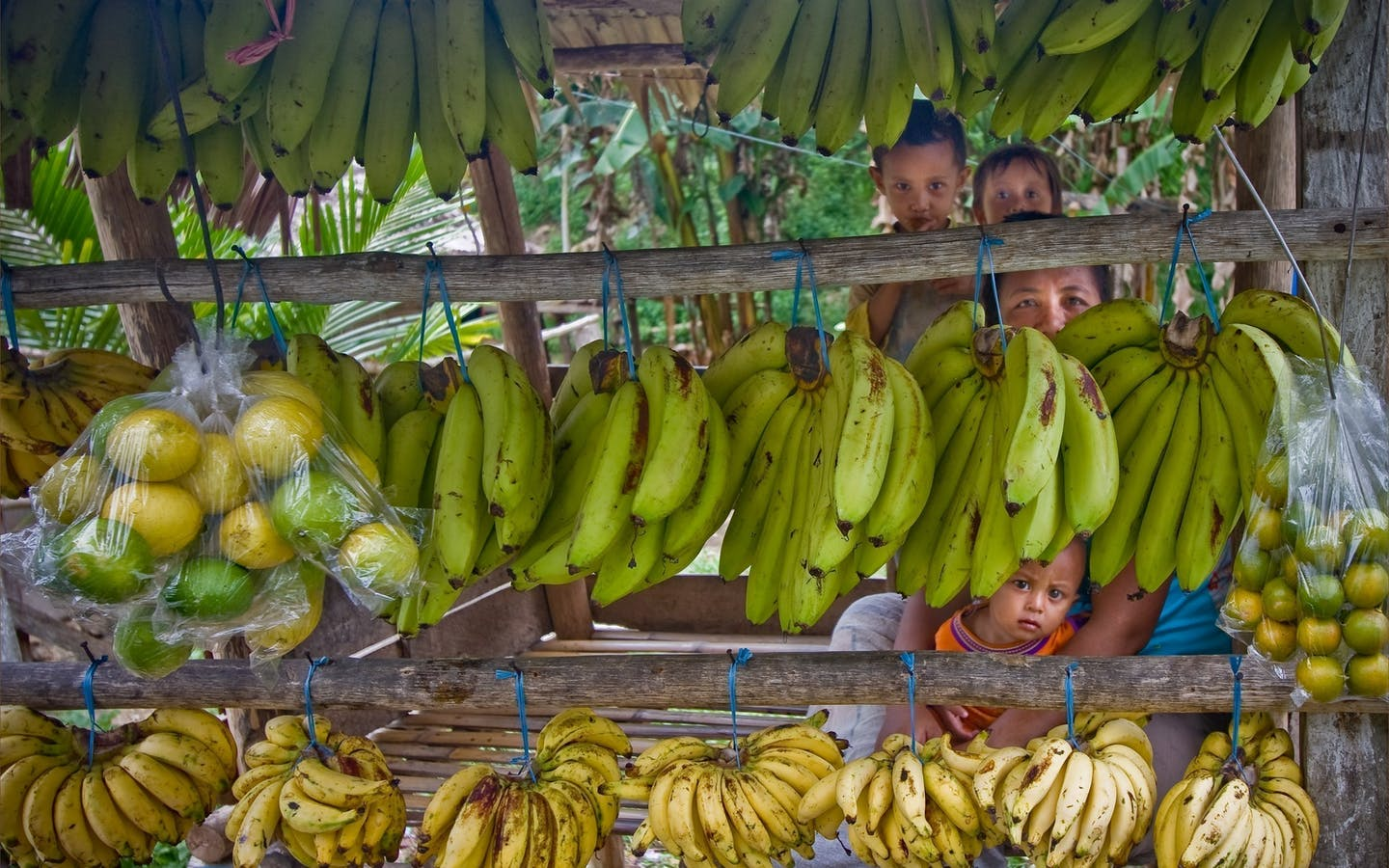 A family peers from behind rows of bananas and limes at a roadside stall in Central Sulawesi, Indonesia