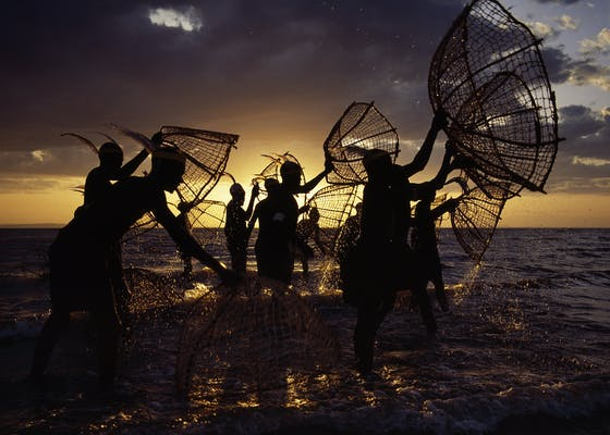 As the sun rises over Lake Turkana, Kenya, a group of fishermen set out with their traditional fishing baskets to catch tilapia in the lake's shallow waters.
