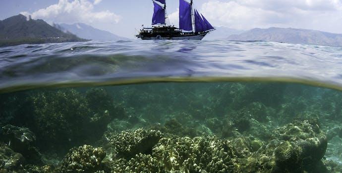 Ternate, off of Alor, Indonesia
