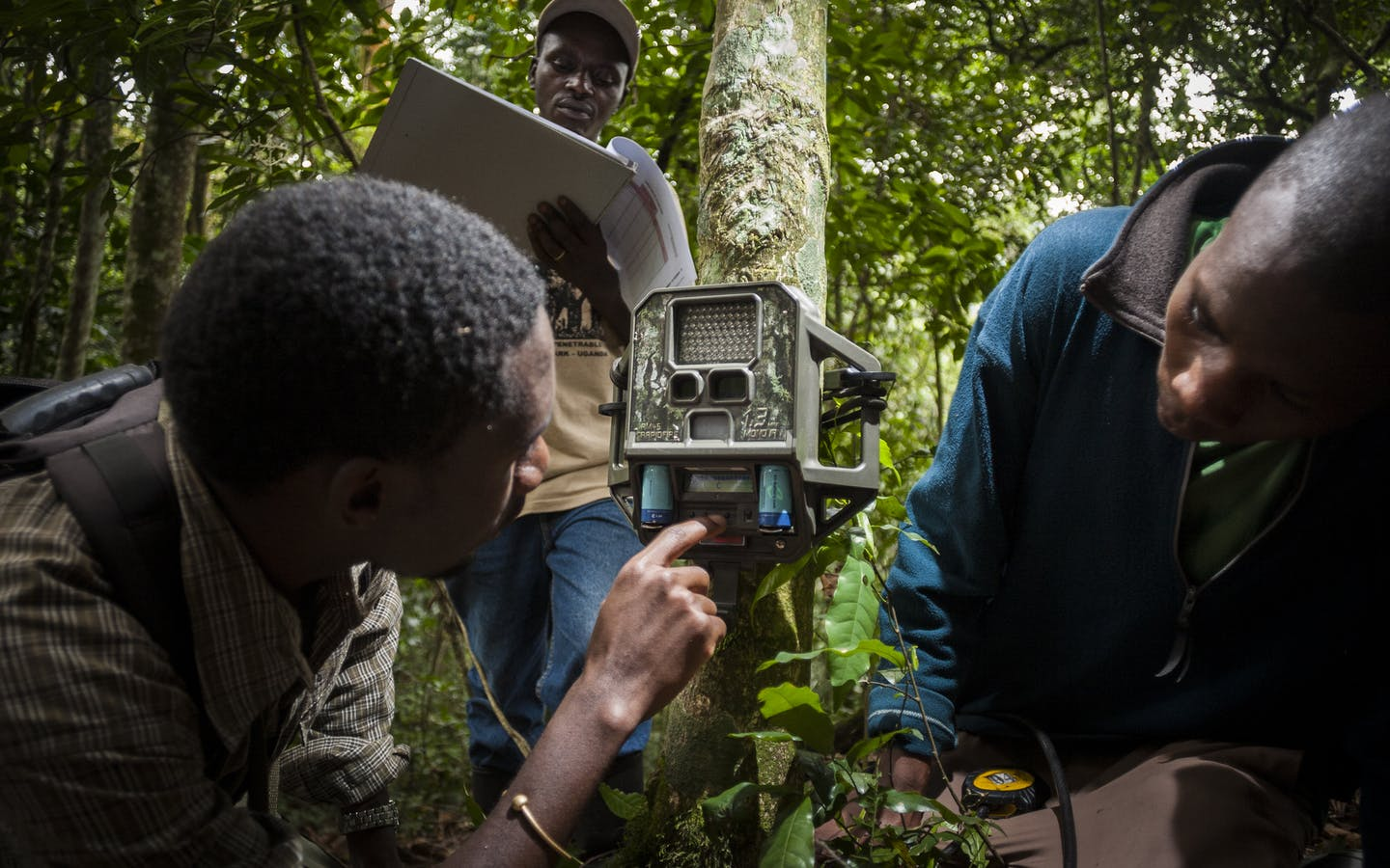 Three men set a camera trap in Uganda