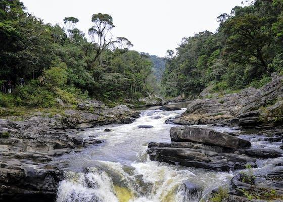 A stream in Madagascar