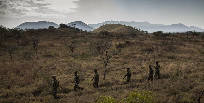 Big Life anti-poaching Rhino unit goes out for their morning patrol looking for tracks and camera traps in the field.