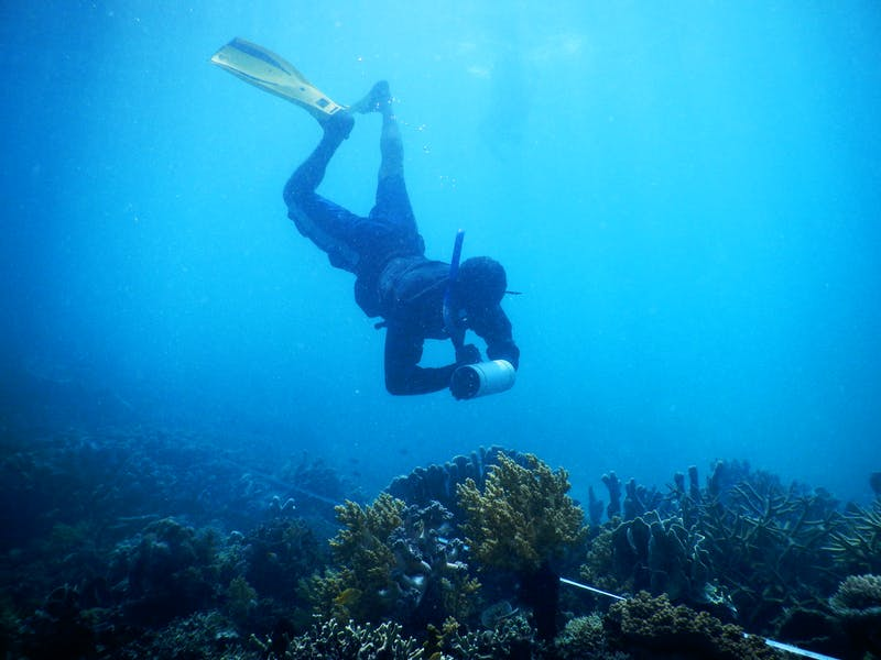 A member of the Wiyaloki Monitoring team, a group of young men and women that work with CI to monitor their local reefs.