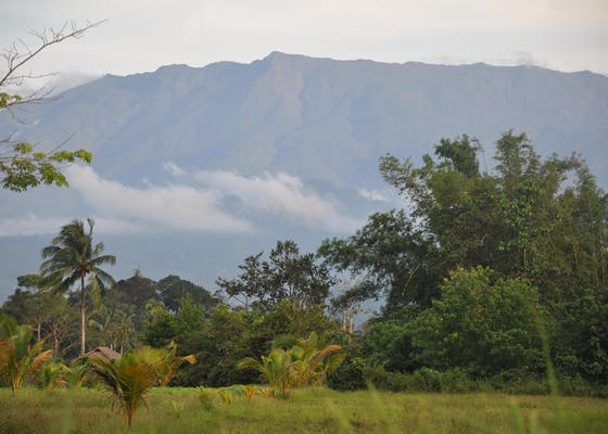 Mt. Mantalingahan Protected Landscape