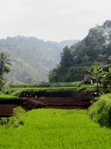 https://ciorg.imgix.net/images/default-source/default-album/daikinindonesia201908?&auto=compress&auto=format&fit=crop