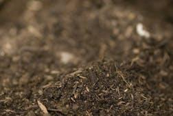 Composted garden soil