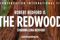 Robert Redford is The Redwood, Starring Lena Redford