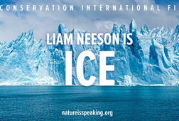 Liam Neeson is Ice
