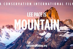 Lee Pace is Mountain