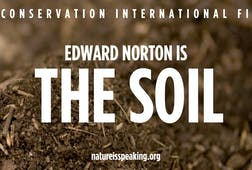 Edward Norton is The Soil