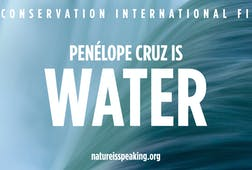 Penélope Cruz is Water