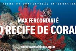 Max Fercondini é O Recife de Coral