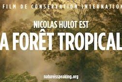 Nicolas Hulot est La Forêt Tropicale