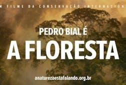 Pedro Bial é A Floresta