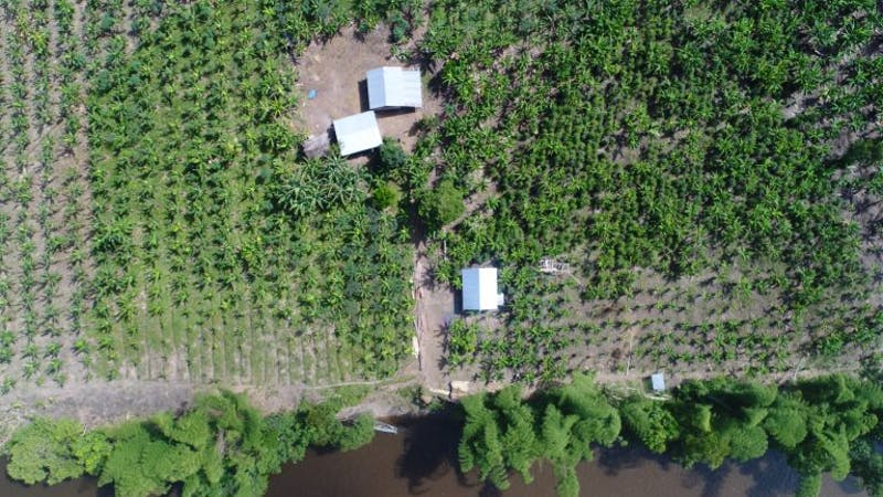 aerial-farm-768x432.jpg?sfvrsn=f7f7b4c4_