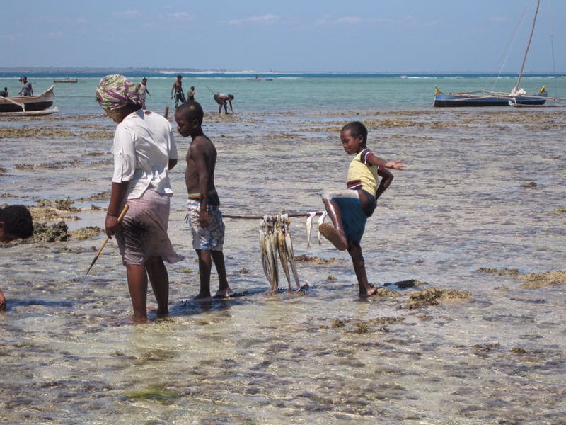 Children often join their mothers on octopus fishing excursions.