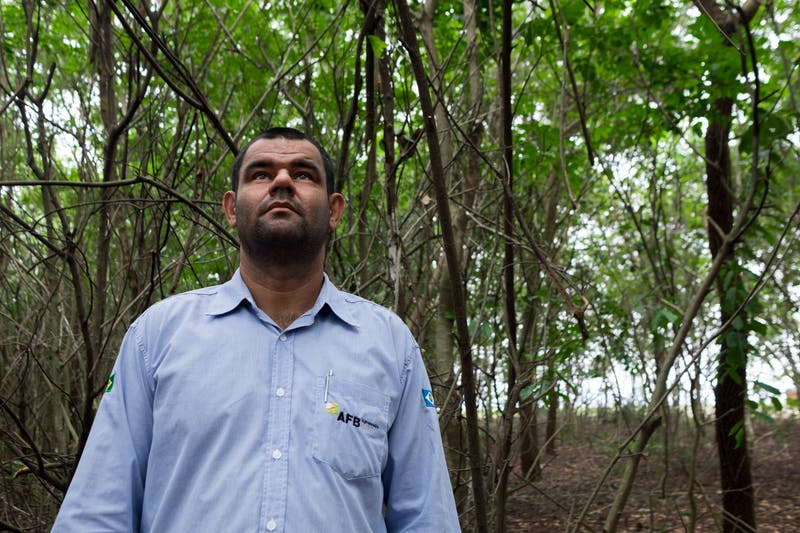Muvuca-a-ciencia–e-arte-de-plantar-florestas-5