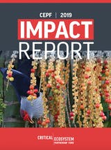 https://ciorg.imgix.net/images/default-source/publication-preview-images/cepf_impact_report_2019?&auto=compress&auto=format&fit=crop