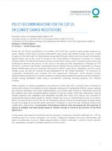 https://ciorg.imgix.net/images/default-source/publication-preview-images/ci-cop-26-policy-recommendations_en-thumbnail?&auto=compress&auto=format&fit=crop