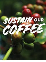 https://ciorg.imgix.net/images/default-source/publication-preview-images/coffee-brochure?&auto=compress&auto=format&fit=crop
