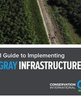 https://ciorg.imgix.net/images/default-source/publication-preview-images/cover-a-practical-guide-to-implementing-green-gray-infrastructure?&auto=compress&auto=format&fit=crop