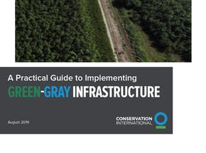 https://ciorg.imgix.net/images/default-source/publication-preview-images/cover-a-practical-guide-to-implementing-green-gray-infrastructure?&auto=compress&auto=format&fit=crop&w=290&h=215
