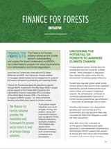 https://ciorg.imgix.net/images/default-source/publication-preview-images/finance-for-forests_factsheet_thumbnail?&auto=compress&auto=format&fit=crop