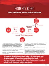 https://ciorg.imgix.net/images/default-source/publication-preview-images/forests-bond_factsheet_thumbnail?&auto=compress&auto=format&fit=crop
