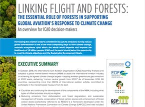 https://ciorg.imgix.net/images/default-source/publication-preview-images/linking-flight-and-forests_cover1?&auto=compress&auto=format&fit=crop&w=290&h=215
