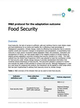 https://ciorg.imgix.net/images/default-source/publication-preview-images/nbs-m-e-food-security-protocol-madagascar-95514-cover?&auto=compress&auto=format&fit=crop