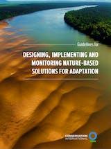 https://ciorg.imgix.net/images/default-source/publication-preview-images/nbsadaptation_guidelines2021?&auto=compress&auto=format&fit=crop
