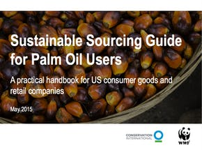 https://ciorg.imgix.net/images/default-source/publication-preview-images/sustainable-sourcing-guide-for-palm-oil-users-thumbnail?&auto=compress&auto=format&fit=crop&w=290&h=215