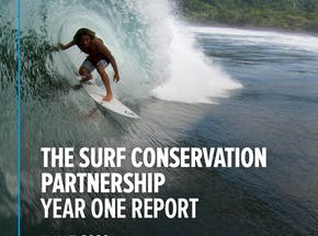 https://ciorg.imgix.net/images/default-source/publication-preview-images/the-surf-conservation-partnership-year-one-report-june-2020?&auto=compress&auto=format&fit=crop&w=290&h=215
