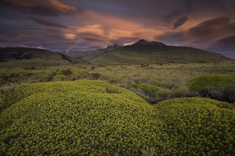 Patagonian landscape, Argentina